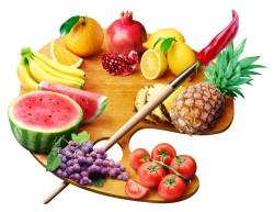 clasificacion-de-dietas
